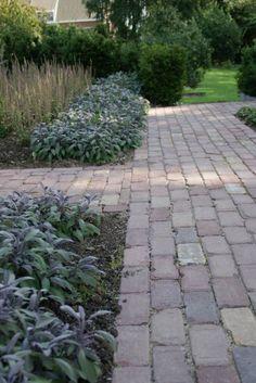 .Strak pad en speelse border Greenhouse Gardening, Surface Design, Sidewalk, Rondom, Cottage, Pad, Backyards, Nice, Planting