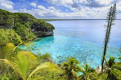 La Nouvelle-Calédonie est aussi belle sous l'eau que sur terre. Ses sites pour tous les niveaux attendent les plongeurs.