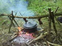 Wilderness Survival Food Learn how to survive any situation at dansdepot.com