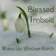 Hello and Blessed Imbolc to all. Today is more than just Super Bowl Sunday and Groundhog day, it is also the Pagan holiday of Imbolc celebrated on February of each year (some will celebrate o… Imbolc Ritual, Samhain, Fire Festival, Festival Lights, Irish Festival, Durga, Yule, Pagan Festivals, Beginning Of Spring