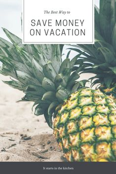 Free Image on Pixabay - Pineapples, Fruit, Beach, Sand Best Vacations, Vacation Trips, Family Vacations, Family Travel, Best Travel Guides, Florida Travel, Travel And Leisure, Ways To Save Money, Travel With Kids