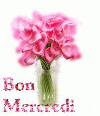 Gif Bon Mercredi (83)
