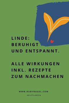 Lerne in diesem Artikel, Lindenblüten richtig einzusetzen, um ruhig und tief zu schlafen. Du findet außerdem noch tolle Linden-Rezepte zum Nachmachen! #heilpflanzen #heilkräuter #entspannen #schlaf #stress #naturheilkunde #rubynagel