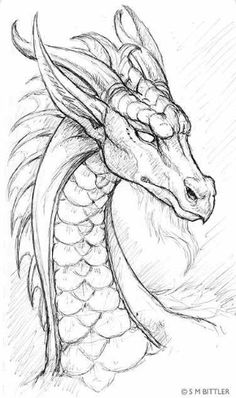 Cool dragon drawing