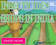 Trump Is Listening To Farmer Best Sell In Insecticides Fertilizers Trump Is Listening To Farmer For Insecticides Fertilizers Buy Cheap Insecticides Fertilizers Product Discount on Insecticides Fertilizers Product Free Home Delivery For Insecticides Fertilizers Product