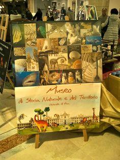 Rebecca Giusti : I BORGHI DI PISA - MUSEO DI STORIA NATURALE, UNIVE...