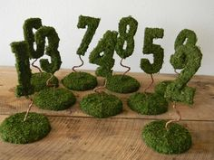 Garden Collection - Set of 9 Moss Covered Wedding Reception Table Numbers on Base (SET 1 - 9). $129.99, via Etsy.