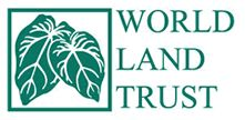 Wildlife Webcams - Live from the Rainforest   World Land Trust THIS IS AWESOME!!!