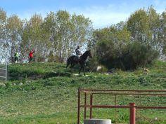 Rio Llobregat -  Sant Boi