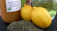 Pour vous soigner au naturel, voici une recette de sirop pour la toux très facile à réaliser avec comme seuls ingrédients du thym, du miel, du citron et de l'eau. Il est idéal en cas de quinte de toux. Cocktails, Drinks, Aloe Vera, Natural Remedies, Healthy Life, Cantaloupe, Detox, Voici, Massage