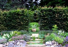 About Digging Dog Nursery Digging Dogs, Dog Nursery, Garden Seeds, Stepping Stones, To Go, Outdoor Decor, Plants, Gardens, World