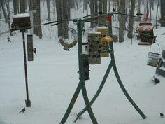 glider swing recycled into a bird feeding station