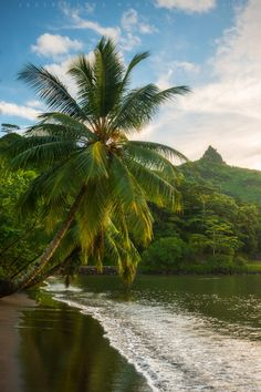 Tahiti Afternoon Mo'orea, French Polynesia | by Jesse Estes
