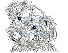 Schnauzer Coloring Page Coloring Pages Pinterest