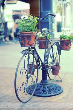 Bicycle bike with planters, repurposed iron table umbrella stand; outdoor garden art; Upcycle, Recycle, Salvage, diy, thrift, flea, repurpose, refashion!  For vintage ideas and goods shop at Estate ReSale & ReDesign, Bonita Springs, FL