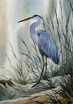 Herons Sheltered Retreat by James Williamson