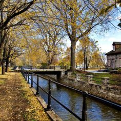 Montreal is over 300 years old, but despite her advanced age, she still looks damn beautiful. Take note: these are the most beautiful places in Montreal. Quebec Montreal, Montreal Ville, Quebec City, Montreal Food, Montreal Vacation, Montreal Travel, Canada Travel, Canada Trip, Parcs
