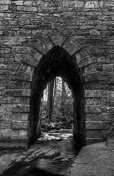 Poinsett Bridge taken by Walter Arnold. (It's in SC off hwy 25 between Hendersonville NC and Greenville SC. According to the marker it was built in 1820 by Abram Blanding.)