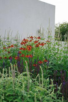 Perennial planting