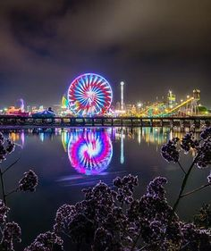 Opening night at the San Diego County Fair [Del Mar Fair] by Evgeny Yorobe Photography!