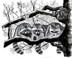"""""""Three in a Tree""""   Original Pen & Ink by Steven Harris"""