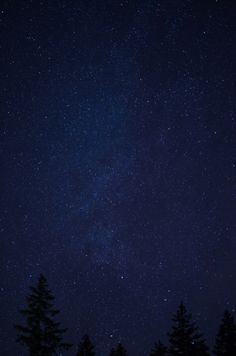 millivedder: Milky W