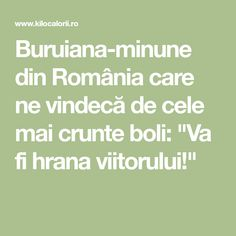 """Buruiana-minune din România care ne vindecă de cele mai crunte boli: """"Va fi hrana viitorului!"""""""