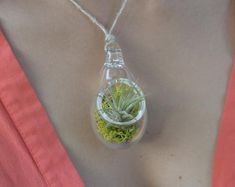 Air Plant Terrarium Pendant by hammer + vine. Carry a piece of living art near your heart. This lovely little terrarium can be worn as a pendant or hung in a window. Hand blown by glass artist Devin Mense in Portland, OR. Diy Jewelry, Jewelery, Jewelry Accessories, Jewelry Making, Air Plant Display, Air Plant Terrarium, Terrarium Necklace, Cactus Flower, Air Plants