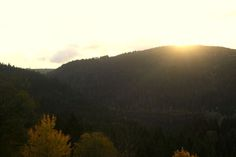 Ein Wellnesshotel hoch auf dem Berg... mitten in der Natur... das gibt es im #Schwarzwald.