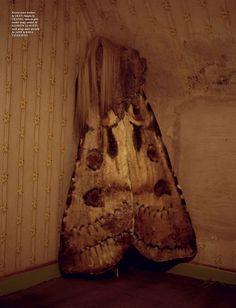 moth/girl... by tim walker