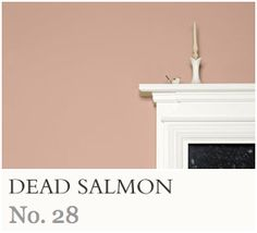 Best Farrow And Ball Dead Salmon Joa S White Brassica And 400 x 300
