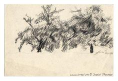 S'asseoir sous un pommier, et croquer une petite pomme tombée par terre, et rêver un moment au risque de recevoir un pomme sur la tête. Deux pommiers, dessin au crayon, Frauenfeld 1979.