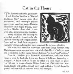 wicca animal # Cat in the house Wiccan Witch, Magick Spells, Wicca Witchcraft, Hoodoo Spells, Adorable Petite Fille, Animal Spirit Guides, Cat Spirit Animal, White Witch, Dark Witch