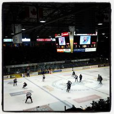 #Barrie Colts just scored the 1st goal of the game! Go #Colts Go!