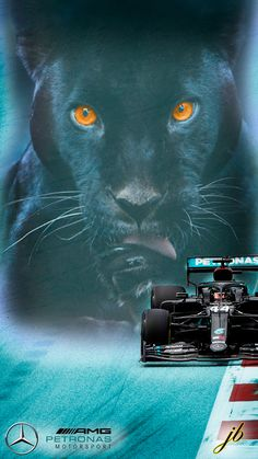 Mercedes F1 Black Panther Lewis Hamilton, Black Panther, F1, Wallpapers, Animales, Wallpaper