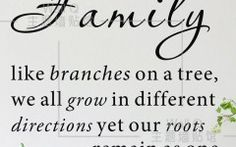 Family Quotes About Trees