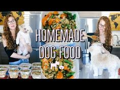 HOMEMADE + HEALTHY DOG FOOD RECIPE | COOKING FOR YOUR DOG🐶 - YouTube