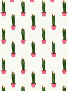 'cactus cactus everywhere' (lápices de colores, agosto 2014) by Daniela Dahf Henriquez.