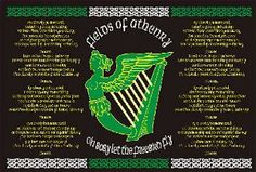 Fields of Athenry Flag This flag displays the lyrics to the famous Irish song 'Fields of Athenry' and has the Irish coat of arms on it (the Harp).