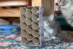 Stick treats or kibble in a homemade cat toy