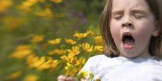 Αλλεργίες. Πώς θα γλιτώσετε από τις αλλεργίες περισσότερα στο : http://www.helppost.gr/ygeia/health/allergies-pos-tha-glytosete/