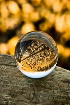 A globe of glass | from this ivy house tumblr. Unsure of photographer so can't credit | #askilfulwarrior