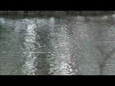 A full hour of blissful sounds from Snatam Kaur - always a yogis favorite  Playlist: 1. Suni-ai Celebration (Album: Celebrate Peace 2008) 2. Guru Ram Das Raakho Saranaa - ee (Album: Anand 2006) 3. Earth Prayer (Album: Ras 2011) 4. Deep Blue Sea (Album: Celebrate Peace 2008) 5. Aad Guray Nameh (Album: Celebrate Peace 2008) 6. Mother's Blessing (Album: Liberation's Door 2009) 7. Anand ( Bliss ) (Album: Anand 2006)