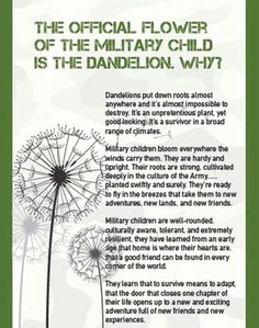 Military Children: Luv this....A good read for everyone... Luv ya, Alex and Tristan