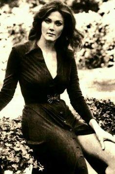 Lynda Carter Lynda Carter, Celebrity Faces, Celebrity Photos, Beautiful Celebrities, Beautiful Women, Stylish Older Women, Wonder Woman, Raquel Welch, Gal Gadot