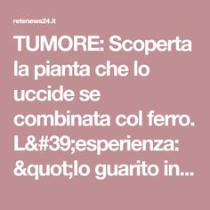 "TUMORE: Scoperta la pianta che lo uccide se combinata col ferro. L'esperienza: ""Io guarito in 48 ore"". Autorevole rivista conferma: ""tutto vero"" Collagen, Health, How To Make, Iron, Medicine, Pharmacy, Letter Case, Health Care, Salud"
