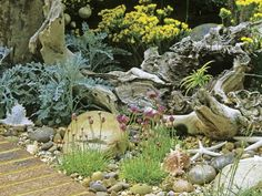 To mimic the seaside environment, create the illusion of shallow soils and drought conditions, as with a gravel border.
