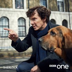 First look: Benedict Cumberbatch in #Sherlock Series Four.  The game is on.  The image features Benedict Cumberbatch as Sherlock Holmes looking down the street with a dog. The series, which also stars Martin Freeman as John Watson, is expected to return in early 2017.