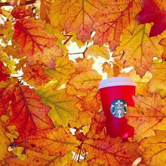 2015 Red Cup Contest entrant: Instagram user @abbys_inspirations Starbucks Cup Art, Starbucks Drinks, Starbucks Coffee, Starbucks Advertising, Autumn Aesthetic, Instagram Users, Instagram Posts, Coffee Break, Decoration