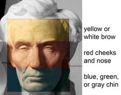 The complexion of a light-skinned face is divided into three zones. The forehead is a whitish or golden color. From the forehead to the bott...